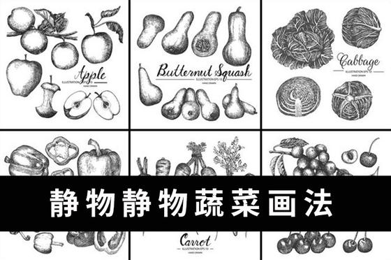 素描靜物之素描蔬菜類畫法