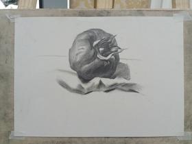 《素描西紅柿怎么畫?西紅柿畫法練習》By s520874